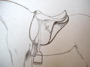 Come disegnare una sella su un cavallo